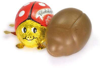 Schokoladenhülsenanlagen 5